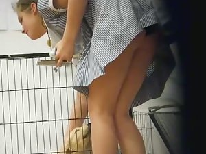 Schoolgirl's upskirt while petting dogs